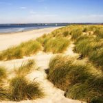 Youth Group Beach Trip - Sunday 24 July